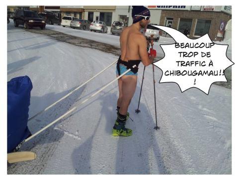 Projet Karibu caribou Ski randonnée nordique Chibougamau Québec