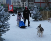 Intersport_U-Ski_paris_2015_chien-traineau